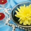 Stock Photo: Floating flower and candles
