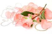 Pétalos y rosa — Foto de Stock