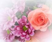 Fine flowers — Stock Photo