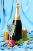 Champagne and tulip — Stock Photo