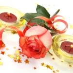 Fine rose — Stock Photo #31047607