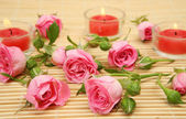 Pink roses and candles — Foto Stock