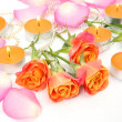 Roses and candles — Stockfoto