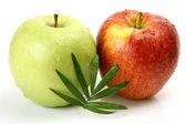 Ripe apples fruits — Stock Photo