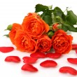 Stock Photo: Fine roses and scarlet hearts