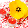 Yellow tulip and candles — Stock Photo