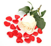 Fine rose and scarlet hearts — Stockfoto