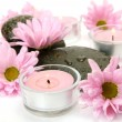 Pink flowers and candle — Stock Photo