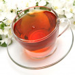 Tea and flowers — Stock Photo