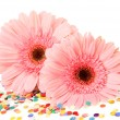 Pink flowers — Stock Photo #36089833