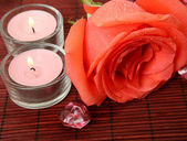 Fine rose and candles — Stockfoto