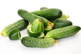 Fresh cucumbers for a healthy feed — Stock Photo
