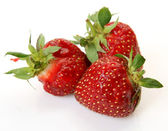 Ripe strawberries — Stock Photo