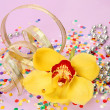 Yellow orchid and confetti — Stock Photo