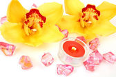 Yellow orchids and candles — Stok fotoğraf