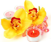 Yellow orchids and candles — Stockfoto