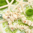 Green flowers and cockleshells — Stock Photo