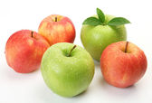 Ripe apples — Stock Photo