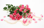 Pink roses and pearls — Foto Stock