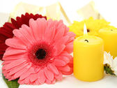 Flowers and candles — Stock Photo