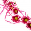 Pink flowers — Stock Photo #39943425