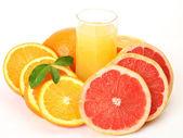 Ripe oranges and tangerines — Stock Photo