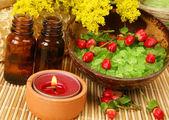 Aromaterapia, spa, masaje — Foto de Stock