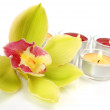 Stock Photo: Fine orchid and candles