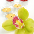 Fine orchid and candles — Stock Photo