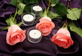 Roses and candles — Stock Photo