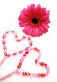 çiçek ve kalp — Stok fotoğraf