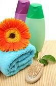 Temas para una ducha y baños — Foto de Stock