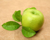 Fresh green apple — Stok fotoğraf