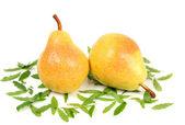 Fresh pear — Stock Photo