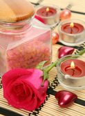 Sea salt and rose — Stock Photo