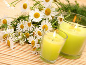 Chamomiles and candles — Stock Photo