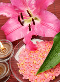 Pink lily and salt — Stock Photo
