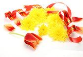 Tulip and streamer — Stock Photo