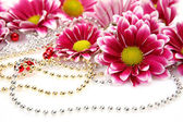 розовые цветы — Стоковое фото