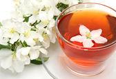 Tea and flowers — Stock Photo