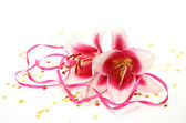 Pink lilies and confetti — Stock Photo