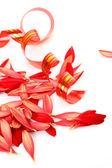 Streamer en bloemblaadjes — Stockfoto