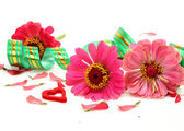 Flowers and streamer — Stock Photo