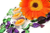 Flower and candles — Stock Photo
