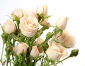 束玫瑰 — 图库照片