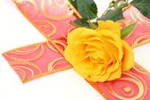 Gelbe rose — Stockfoto