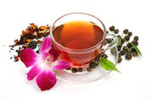 Cup with tea and a flower — Stock Photo