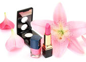 Petals and decorative cosmetics — Stock Photo