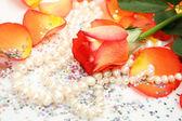 Rose och pärlor — Stockfoto