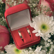 Pair of engagement rings in red box — Stock Photo #1218222